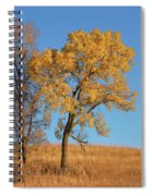 Autumn's Gold - No 1 Spiral Notebook