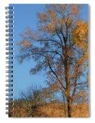 Autumn's Gold  - No 2 Spiral Notebook