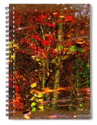 Autumns Looking Glass 2 Spiral Notebook