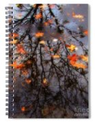 Autumns Looking Glass 3 Spiral Notebook