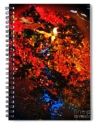 Autumns Looking Glass Spiral Notebook