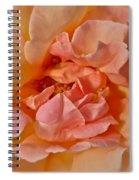 Autumns Rose Spiral Notebook
