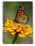 Autumn's Wings Spiral Notebook
