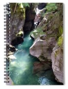Avalanche Creek Glacier National Park Spiral Notebook