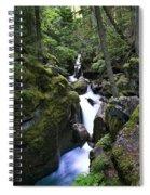 Avalanche Gorge Glacier National Park Spiral Notebook