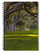 Avenue Of Oaks 2 St Simons Island Ga Spiral Notebook