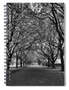 Avenue Of Trees Monochrome Spiral Notebook