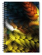 Avian Dreams 2 Spiral Notebook