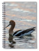 Avocet Sunset Spiral Notebook