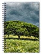 Awaiting The Rain Spiral Notebook