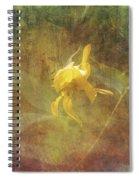 Awaken The Dreamer Spiral Notebook