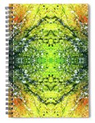 Awakened For Higher Perspective #1424 Spiral Notebook