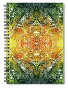 Awakened For Higher Perspective #1425 Spiral Notebook