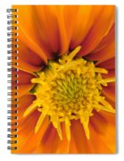 Awesome Blossom Spiral Notebook
