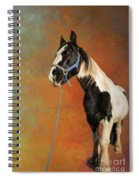 Awesome Gypsy Horse Spiral Notebook