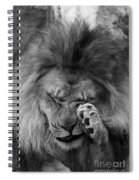 Awwwww..... #2 Black And White Spiral Notebook