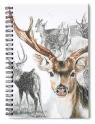 Axis Deer Spiral Notebook