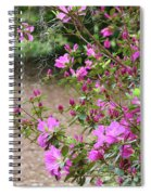 Azalea Branches And Spanish Moss Spiral Notebook