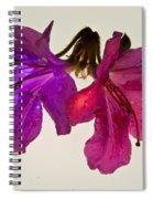 Azalea Double Spiral Notebook