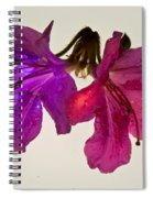 Azalea Doublet Spiral Notebook