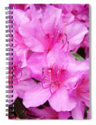Azalea Floral Garden Fine Art Photography Baslee Troutman Spiral Notebook