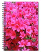 Azalea Flowers Spiral Notebook