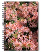 Azalea Wall Spiral Notebook