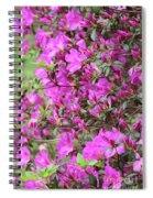 Azalea World Spiral Notebook