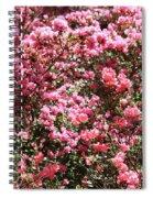 Azaleas Aplenty Spiral Notebook