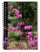 Azaleas II Spiral Notebook