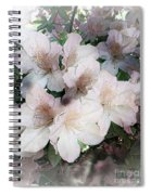 Azaleas Spiral Notebook