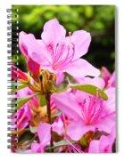 Azaleas Pink Azalea Flowers Artwork 12 Landscape Art Prints Spiral Notebook