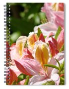 Azaleas Pink Orange Yellow Azalea Flowers 6 Summer Flowers Art Prints Baslee Troutman Spiral Notebook