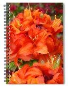 Azaleas Rhodies Art Prints Azalea Flowers Giclee Baslee Troutman Spiral Notebook
