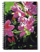 Azaleas With Dew Drop Spiral Notebook