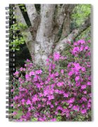 Azaleas With Tree Spiral Notebook