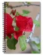 Aztec Bougainvillea  Spiral Notebook