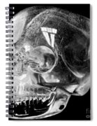 Aztec Rock Crystal Skull Spiral Notebook