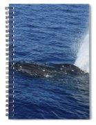 B L O W Spiral Notebook