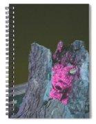 B. W. Ahahaha Spiral Notebook