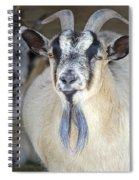 Baaad Spiral Notebook