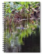 Babcock Wilderness Ranch - Alligator Den Spiral Notebook