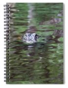 Babcock Wilderness Ranch - Alligator Lake - Heads Up Spiral Notebook