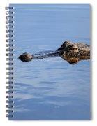 Babcock Wilderness Ranch - Alligator Lake - Waiting For Prey Spiral Notebook