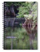 Babcock Wilderness Ranch - Peaceful Alligator Lake Spiral Notebook