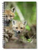 Babes In The Woods Spiral Notebook
