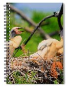 Baby Anhinga Chicks Spiral Notebook