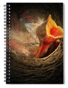Baby Bird In The Nest With Mouth Open Spiral Notebook