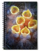 Baby Birds Open Mouths Spiral Notebook