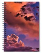 Baby Dragon's Fledgling Flight Spiral Notebook